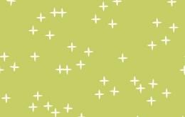 Coton bio birch Wink vert