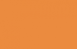 Coton bio birch uni orange