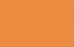Coton bio birch uni orange