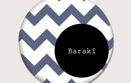 Magnet Barakî!