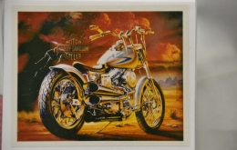 Diamond painting 40x50 Harley Davidson